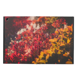 The colors of the autumn nature cover for iPad air