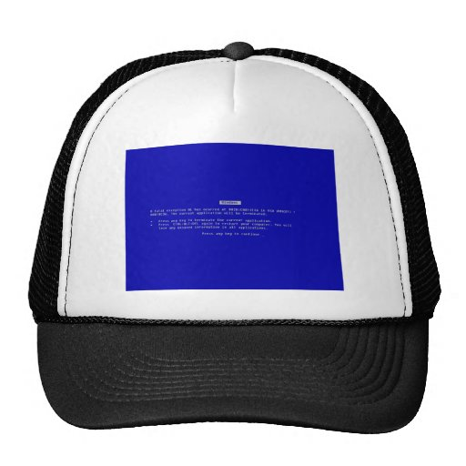 The Computer Blue Screen of Death Hat