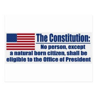 The Constitution Says.... Postcard