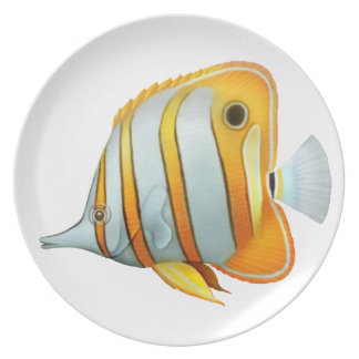 The Copperband Butterfly Fish Plate