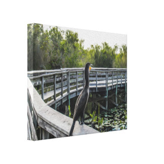 The Cormorant Stretched Canvas Canvas Print