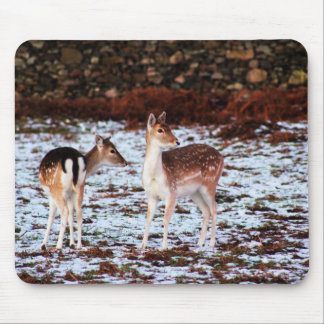 The Couple (deer) Mouse Pad