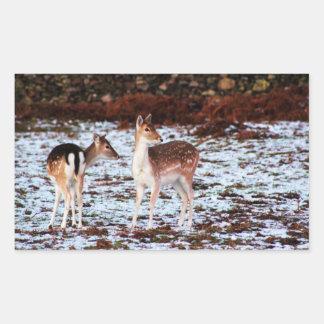The Couple (deer) Rectangular Sticker
