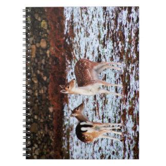 The Couple (deer) Spiral Notebook