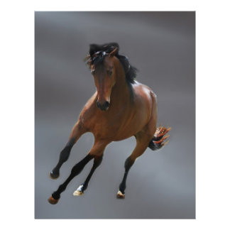 The cowboy horse called Riboking 21.5 Cm X 28 Cm Flyer