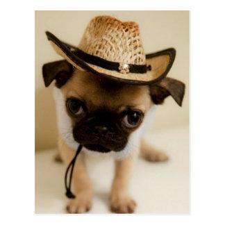 The Cowboy Pug Puppy Postcard