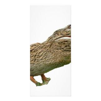 The Crocoduck Rack Card