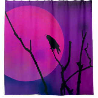 The Crow and the Pink Moon Shower Curtain