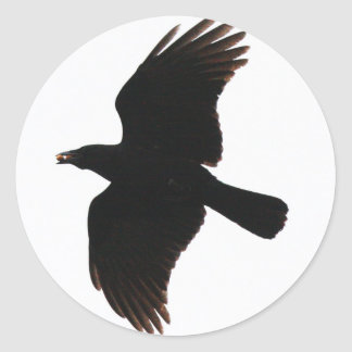 The Crow By Poe Classic Round Sticker
