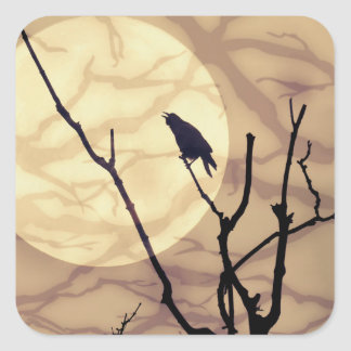 The Crow, The Moon, The Shadows Square Sticker