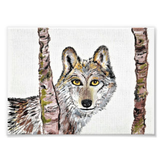 The cunning wolf photo print