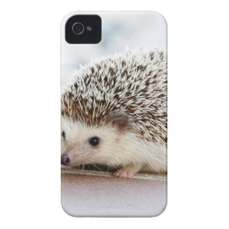 The Cute Baby Hedgehog iPhone 4 Case-Mate Case