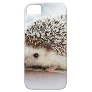 The Cute Baby Hedgehog iPhone 5 Cover