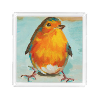 The Cute Red English Robin Acrylic Tray