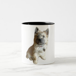 The Cutest Cairn Terrier Ever!  Cuter than Toto! Two-Tone Coffee Mug