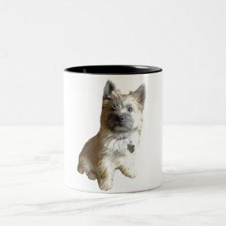 The Cutest Cairn Terrier Ever!  Cuter than Toto! Two-Tone Mug