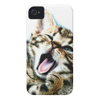 The cutest kitten ever!!! iPhone 4 case