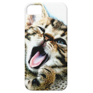 The cutest kitten ever!!! iPhone 5 cases
