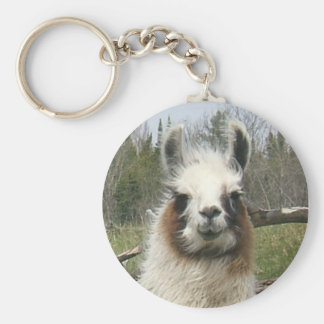 THE DAILY LLAMA KEY RING