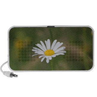 The daisy portable speakers