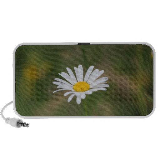 The daisy speaker