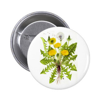 The Dandelion Collection 6 Cm Round Badge