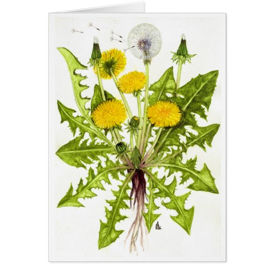 The Dandelion Collection Card