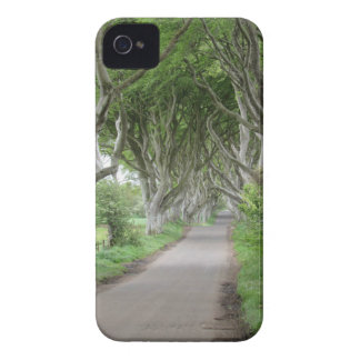 The Dark Hedges iPhone 4 Cover