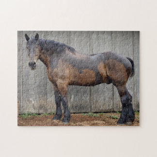 The Dark Horse At The Farm After The Rain Jigsaw Puzzle
