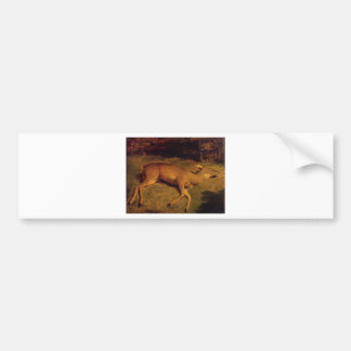 The Dead Doe by Gustave Courbet Bumper Sticker