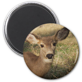 The Deer 6 Cm Round Magnet