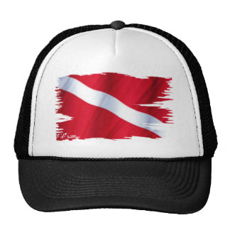 The Dive Flag Collection Cap
