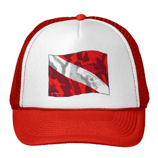 The Dive Flag Collection Hat