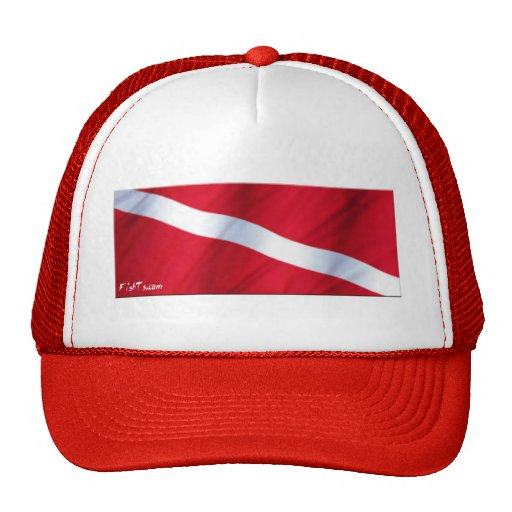 The Dive Flag Collection Hats