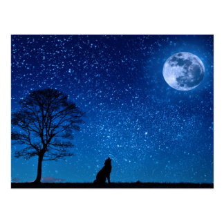 The dog and the Moon Postcard