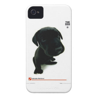 the dog case iPhone 4 cases