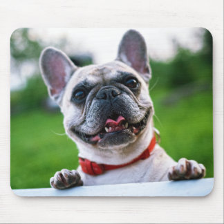 The dog which you laugh mouse pad