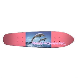 the dolphin rider board skateboard decks
