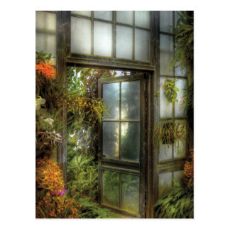 The door to paradise postcard