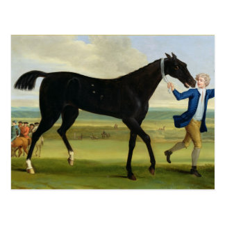 The Duke of Rutland's 'Bonny Black', c.1720 (oil o Postcard
