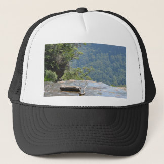 The Edge Trucker Hat
