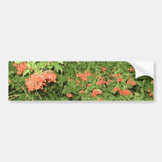 The ekostil, the image of the viburnum bumper sticker