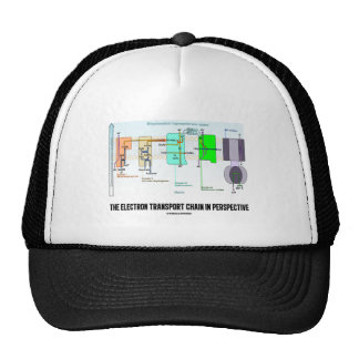 The Electron Transport Chain In Perspective Trucker Hat