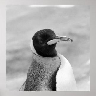 """The Emperor Penguin"" Poster"