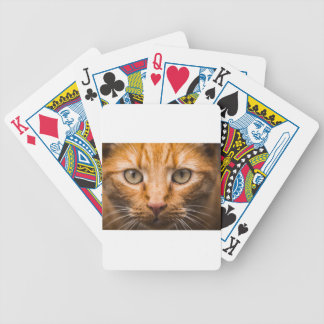 The Essence of a Cat's Look Bicycle Playing Cards