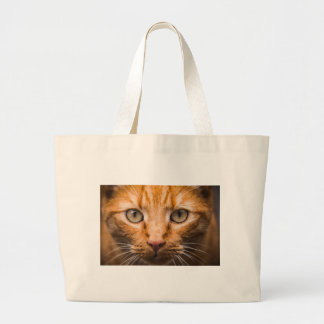 The Essence of a Cat's Look Large Tote Bag