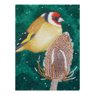 The European Goldfinch Poster