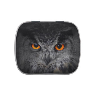The Evil Eyes. ( Eagle Owl, Bubo Bubo) Candy Tins