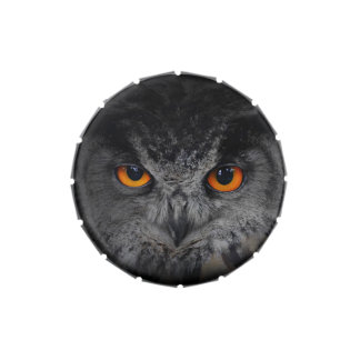 The Evil Eyes. ( Eagle Owl, Bubo Bubo) Jelly Belly Tin