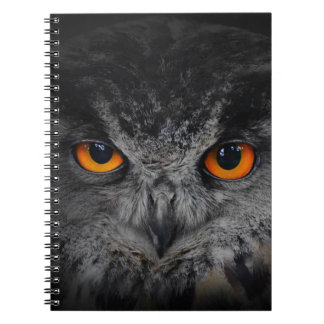 The Evil Eyes. ( Eagle Owl, Bubo Bubo) Note Book